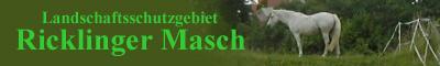 Die Ricklinger Masch